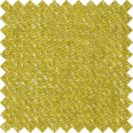 Dicentra 9